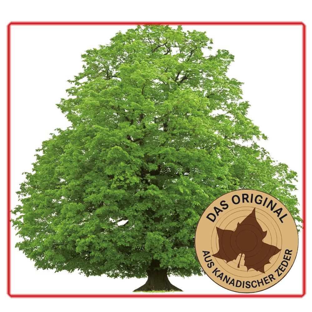 BTM Infrarotkabinen Cedar